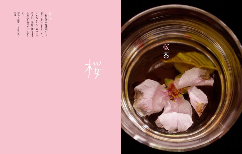 img_design_sango_hanaryori_honmomn10