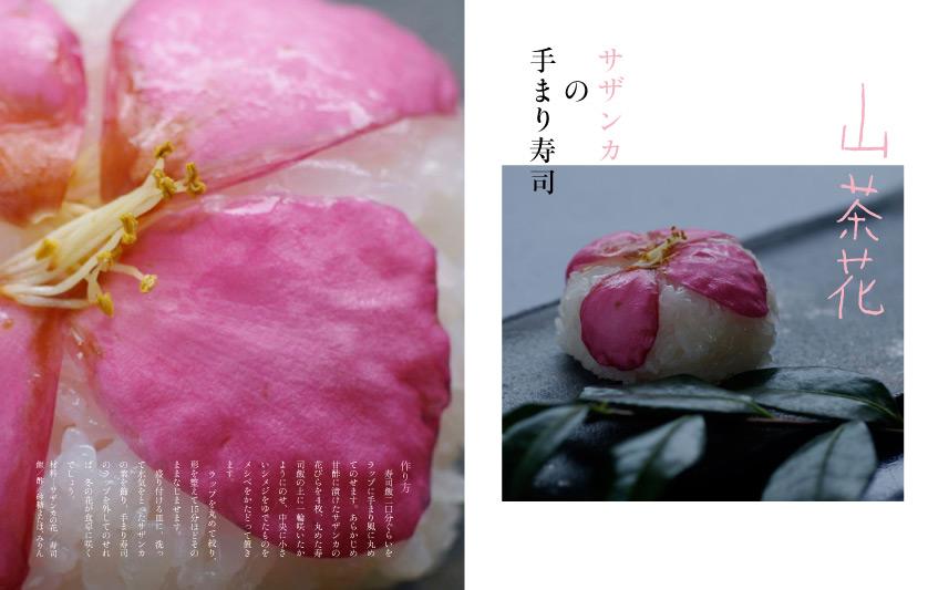 img_design_sango_hanaryori_honmomn13