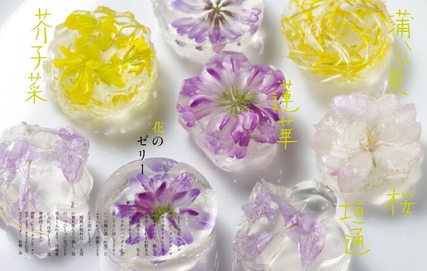 img_design_sango_hanaryori_honmomn7