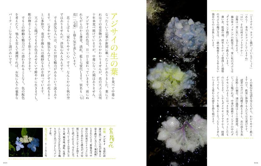 img_design_sango_hanaryori_honmomn8