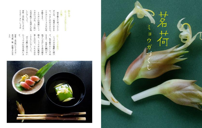 img_design_sango_hanaryori_honmomn9