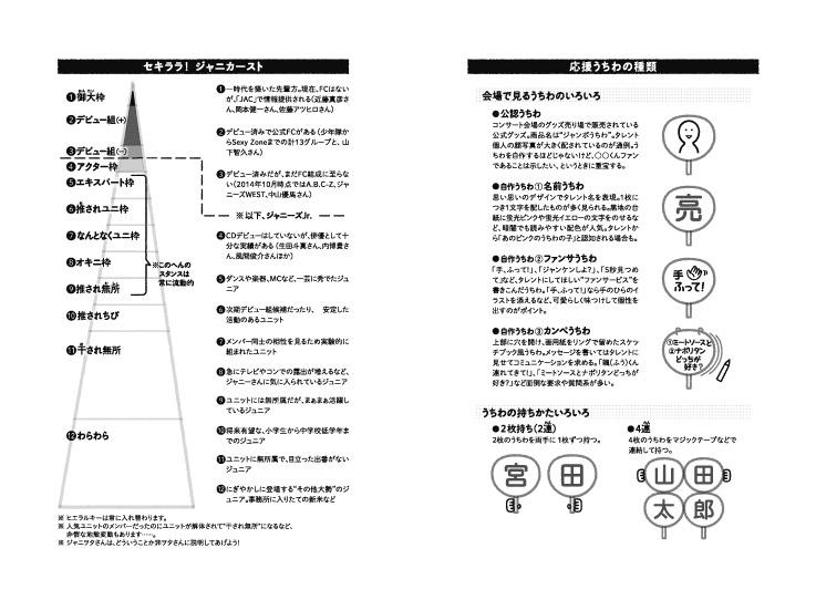 img_design_seisyun_janiwota_honmon7